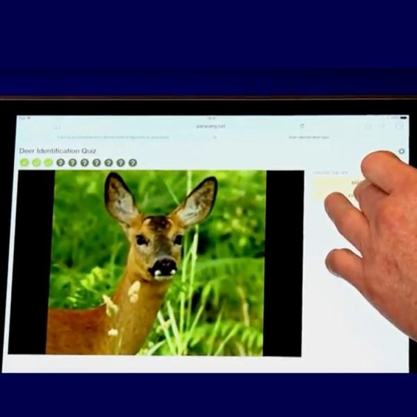 Deer Identification App